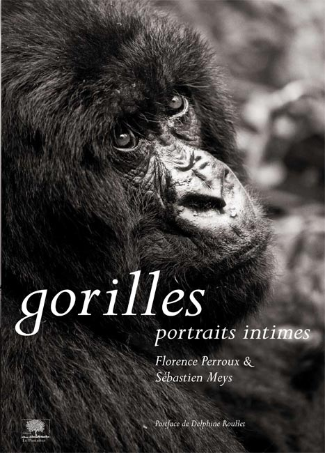 Gorille, Portraits intimes